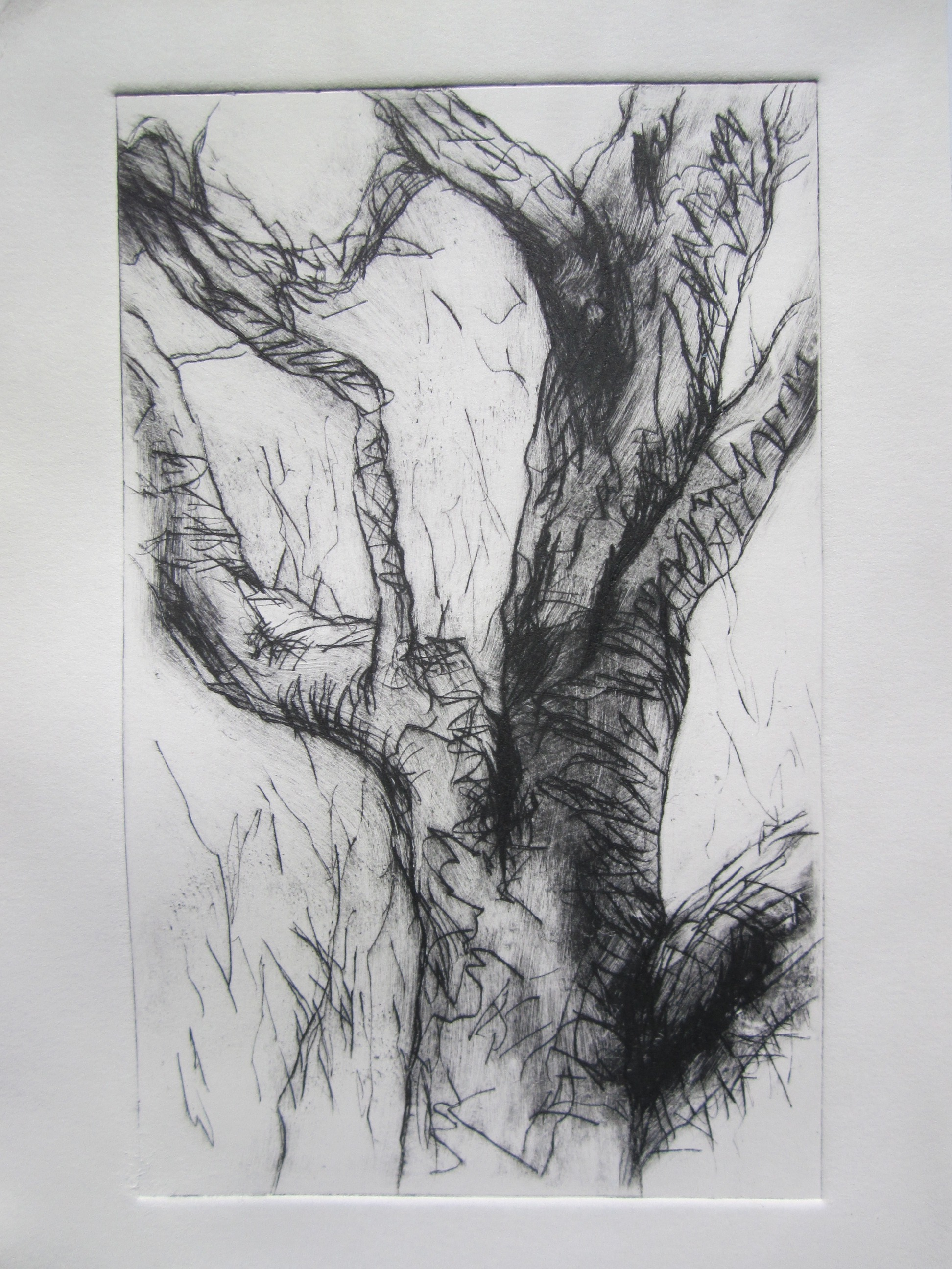 Twisted Gum-drypoint