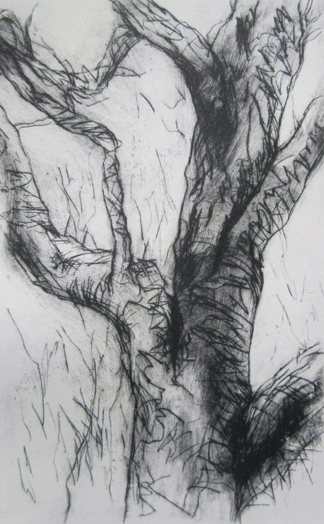Twisted-Gum-drypoint