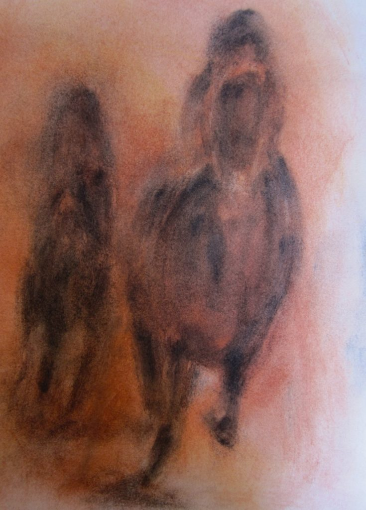 Outback-Racecharcoal-and-pastels